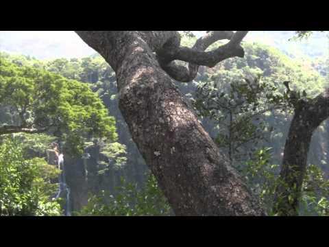 nyika plateau (malawi) part 3 (Manchewe Falls/Lukwe camp)