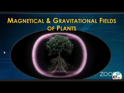 Understanding Nature and Plants as Plasma Field Generators