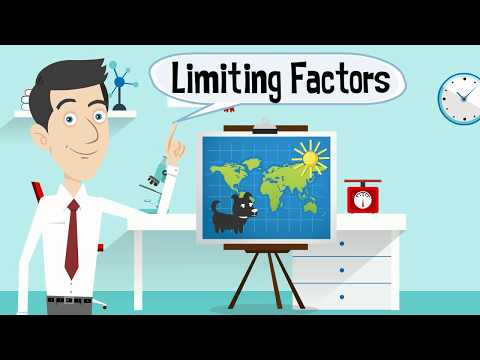 Limiting Factors in an Ecosystem
