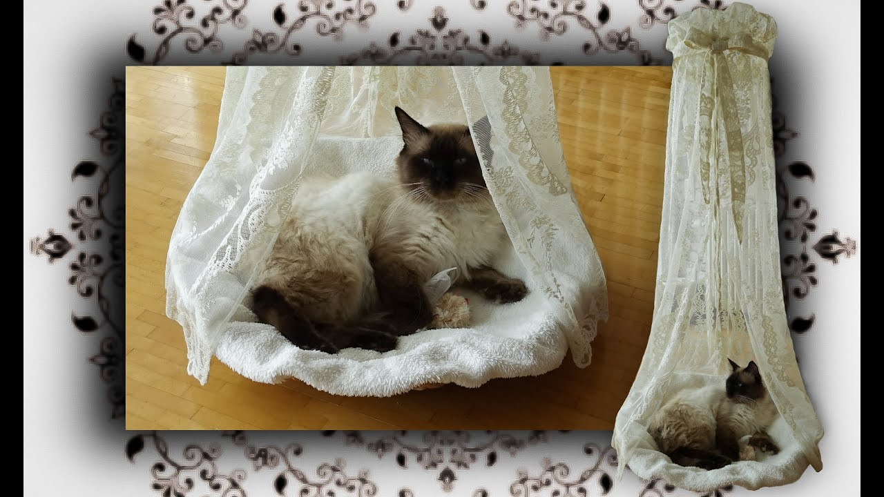 diy himmelbett k rbchen f r katzen poster bed basket for cats youtube. Black Bedroom Furniture Sets. Home Design Ideas