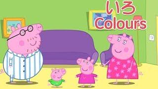 ペッパピッグ|おやすみなさい!家族と色を塗る | ペッパのおやすみスペシャル thumbnail