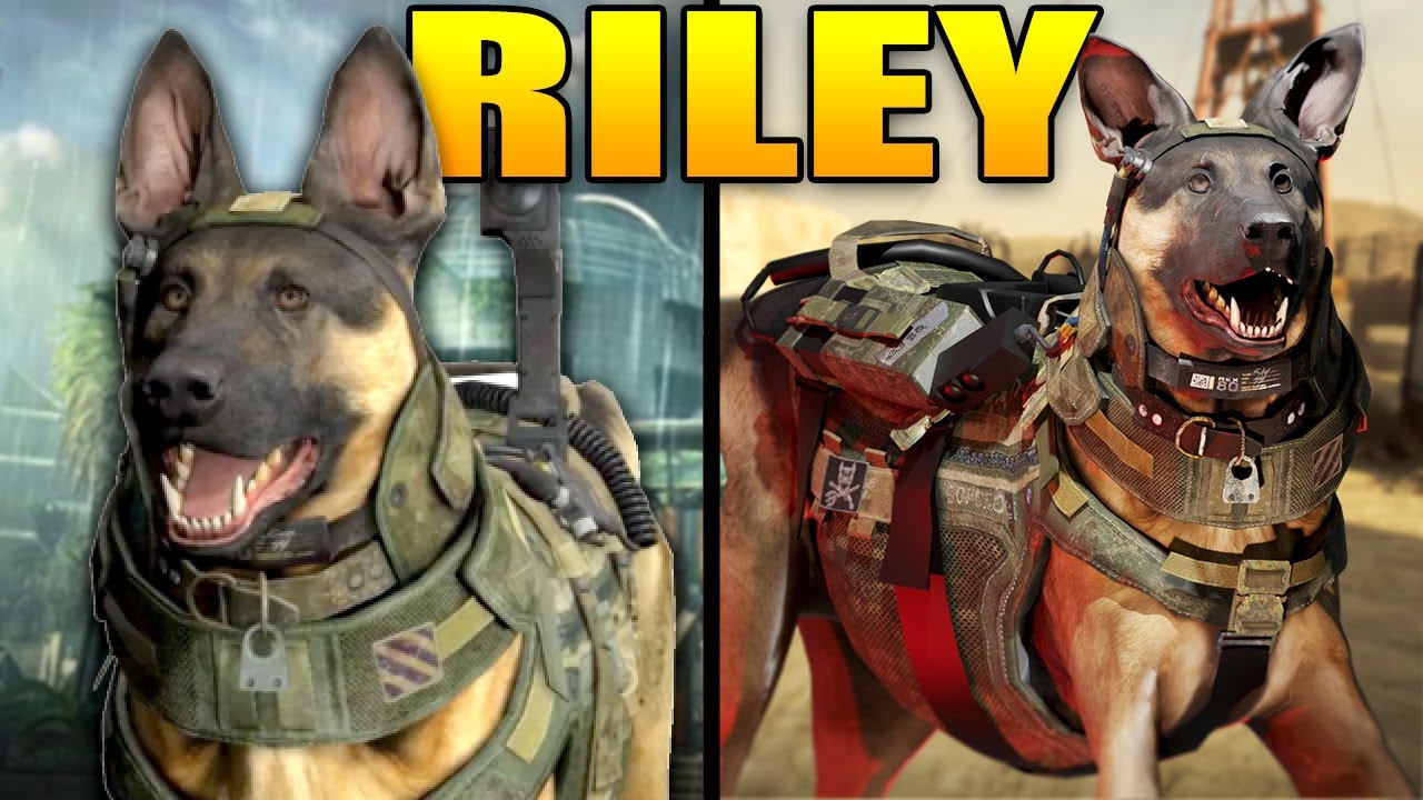 The Full Story of Riley (Modern Warfare Story)
