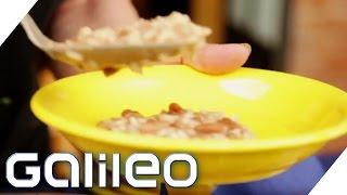 Der Weg des Reises - Made in Italy | Galileo Lunch Break