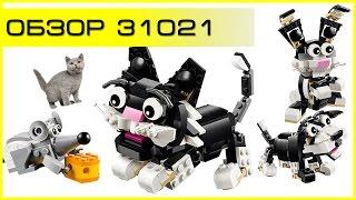 Обзор - LEGO Creator 31021 Furry Creatures (Пушистые зверушки)