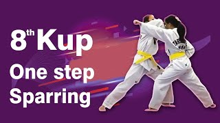 8th Kup Yellow Belt One Step Sparring