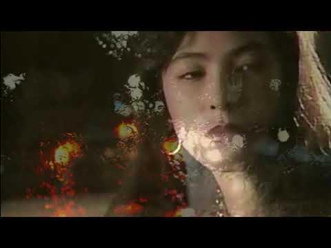 さだめ 秋庭豊とアローナイツさんの歌唱です。