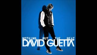 Baixar David Guetta ft.Crystal Nicole - I'm a machine