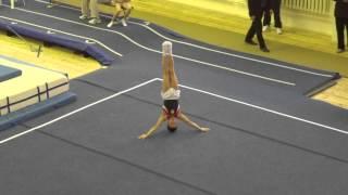 Спортивная гимнастика. Первенство Москвы.