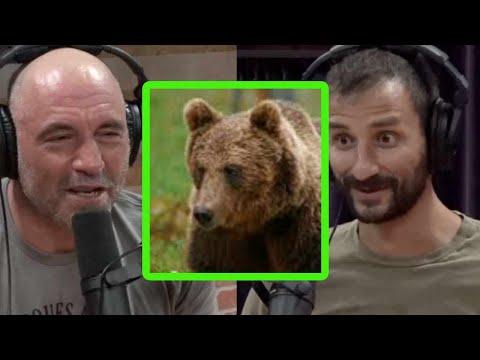 Jordan Jonas Had a Run In with a Bear in Russia