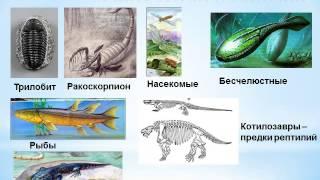 Презентация Ранние этапы развития жизни на земле