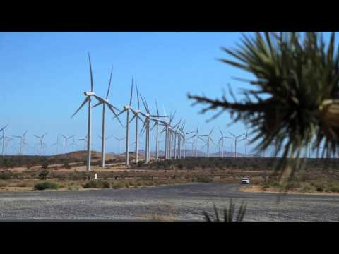A Partnership in Wind
