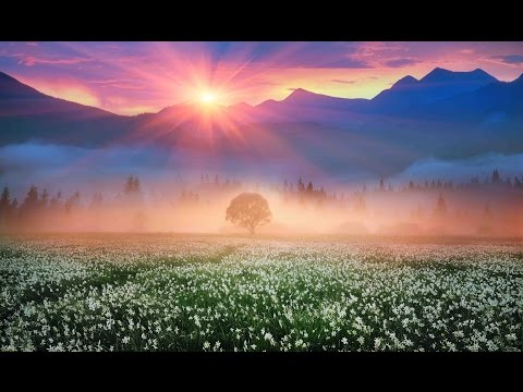 "Peaceful Music, Relaxing Music, Instrumental Music, ""Nature's Landscapes"" by Tim Janis"