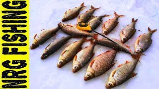 Попали на КРУПНУЮ ПЛОТВУ   Рыбалка 2018