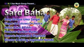 New Santali Video 2017 _ Dengue Umer Sangat_ Sard Baha Santali Video Album 2017