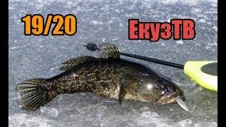 Первый лёд Открытие сезона зимней рыбалки 19 20