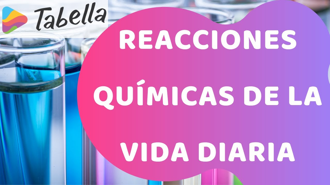 Práctica Reacciones Químicas De La Vida Diaria Aprende Con Tabella