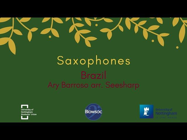 🐣 Saxophones, Brazil