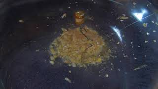 Carp Fishing HD 2 – South Africa Travel Channel 24