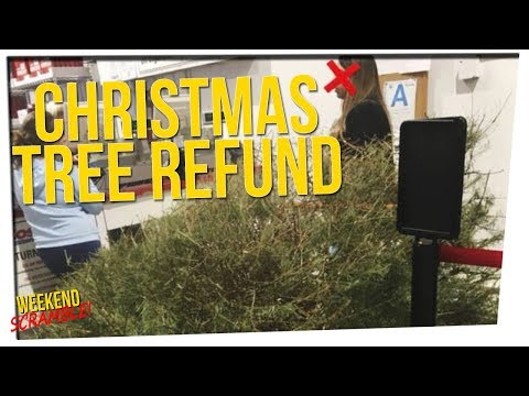 WS - Woman Returns Christmas Tree After Holiday ft. Silent Mike & Gina Darling