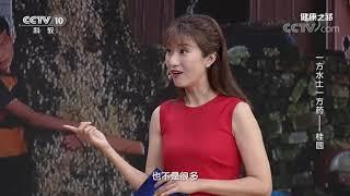 [健康之路]龙眼肉煲汤有助于病后的快速恢复| CCTV科教