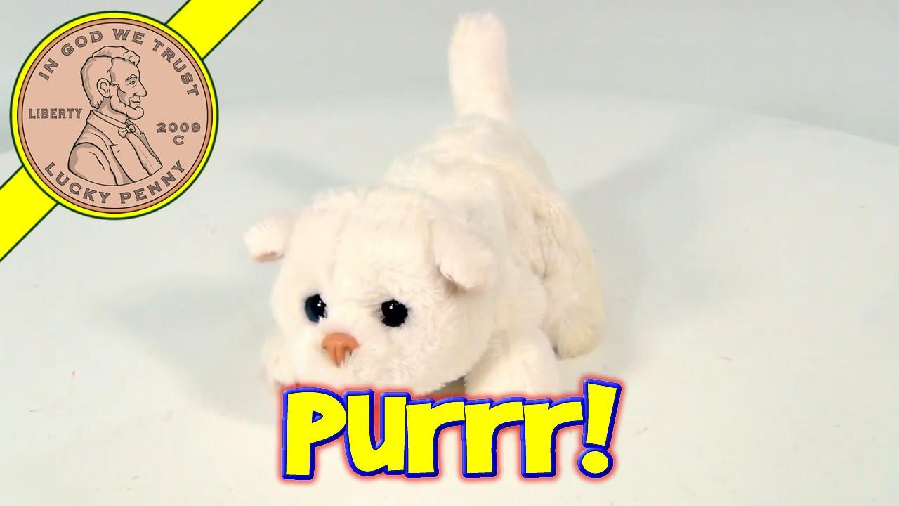 Hasbro Furreal Friends Small Kitty Cat Plush Kitten Toy Youtube