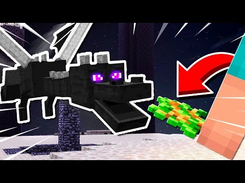 HOW **NOT** TO FIGHT THE ENDERDRAGON (MINECRAFT)