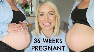 36 WEEK PREGNANCY UPDATE   LOW BABY BUMP   EMILY NORRIS