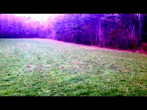 Morning Sunrise Deer Hunting Alabama Bent Creek Lodge