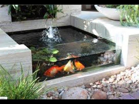 Desain Kolam Ikan Minimalis Masa Kini
