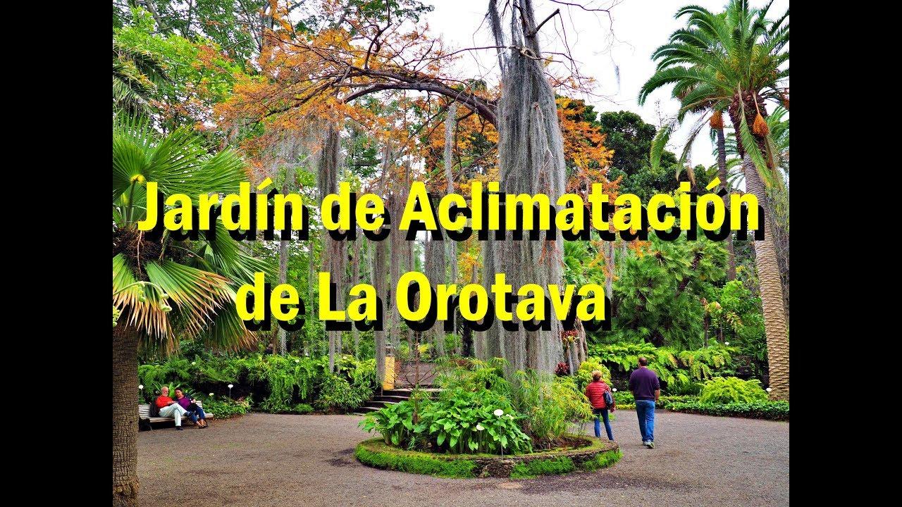 Botanical Garden Jardin De Aclimatacion De La Orotava Youtube