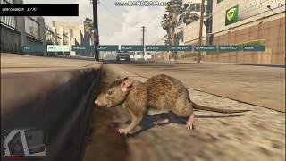 GTA 5-Играем за животных