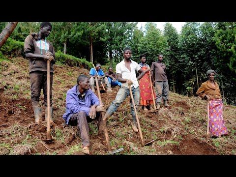 Luboš Fronk a P. John Sunday představují projekt pěstování kávy v Ugandě | Missio interview