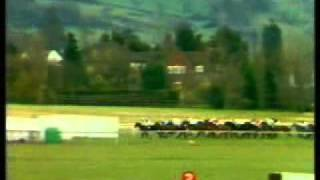 Horse Racing 1982 Triumph Hurdle Cheltenham. Shiny Copper.avi