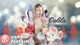 Dalila - Enganchados 2017 - Grandes exitos y los ultimos estrenos