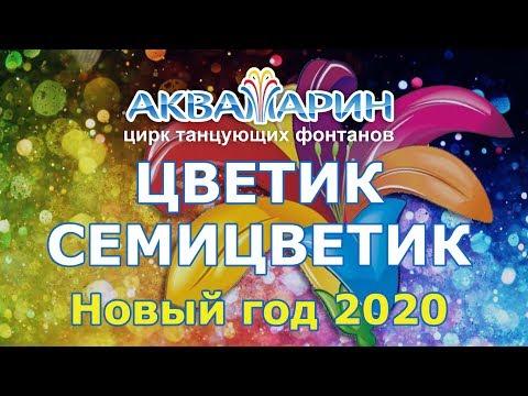 """Новогоднее шоу Цветик-семицветик"""" 1 (2019) FHD"""
