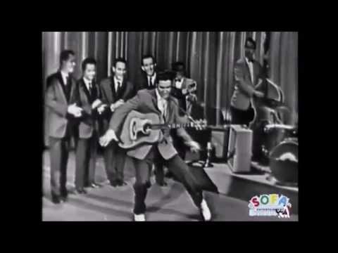 Elvis Presley  Hound dog 60 year
