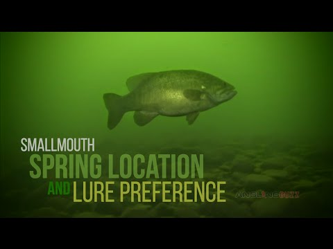 Smallmouth Bass Spring Location And Lure Preference