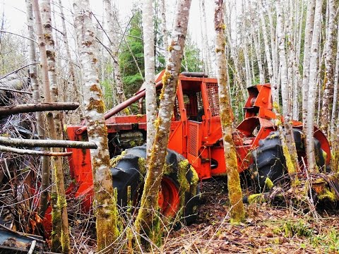 Pieces Of The Forest-logging Equipment Left