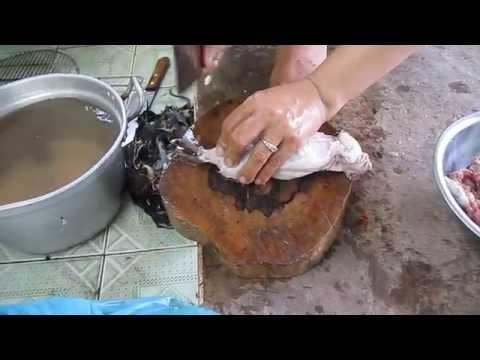 Thịt chuột cống nhum, béo ngon bỗ dưỡng