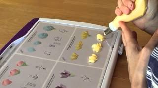 Cake Decorating Piping Techniques: How to Make Carnations