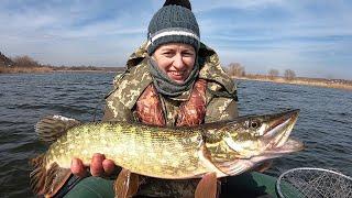 Весенняя рыбалка на щуку Котлеты из щуки