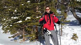 The Great Not-Indoors - Bigfoot Walking