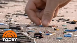 Microplastics Where Do They Come From And How Big  S The Problem TODAY