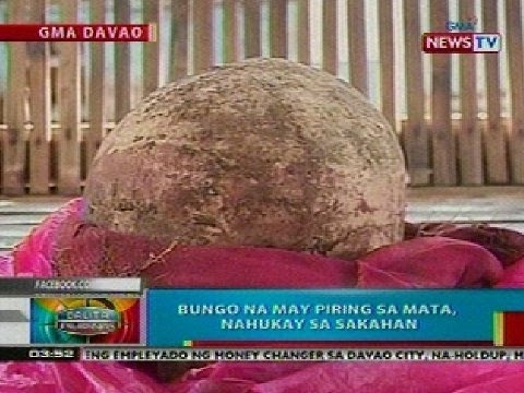 BP: Bungo na may piring sa mata, nahukay sa Davao City
