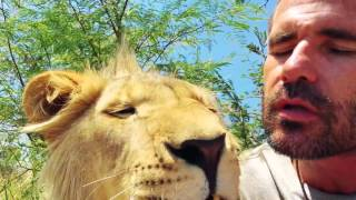 George Confronts Some BEES! | The Lion Whisperer