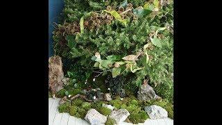 Rustic Beauty Christmas Tree - Martha Stewart