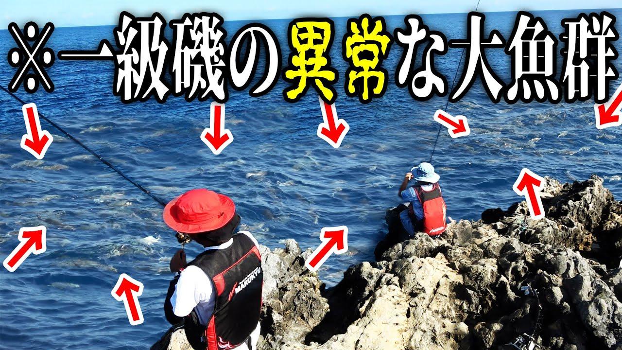 【異常】2年前に突如現れた沖縄一級磯の大魚群を釣れ!【クイシで大物狙い #2】