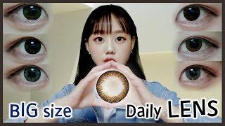 [이응] 데일리 렌즈 (빅사이즈 13.7~13.9)