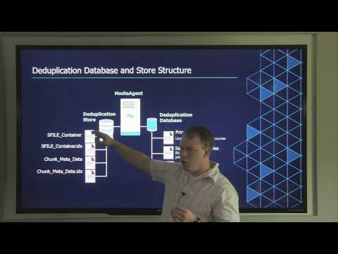 Deduplication Database and Store Structure