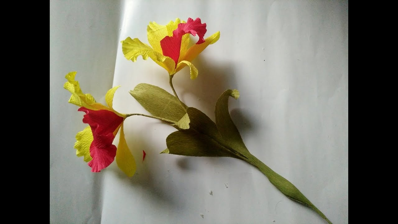 paper flower - d i y - how to make a cattleya orchid